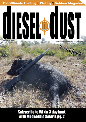 Issue 13 front cover
